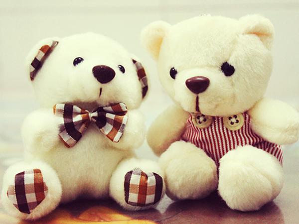 Tả con gấu bông của em