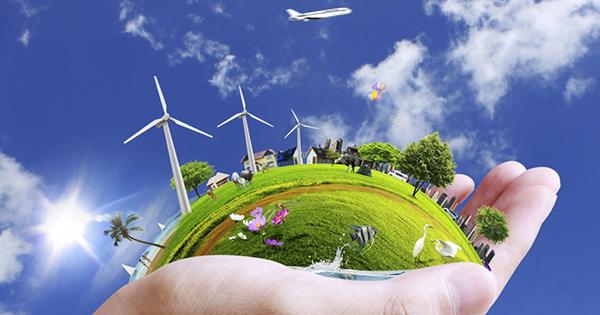 Thuyết minh về vai trò của cây cối trong việc bảo vệ môi trường – Bài tập làm văn số 4 lớp 10